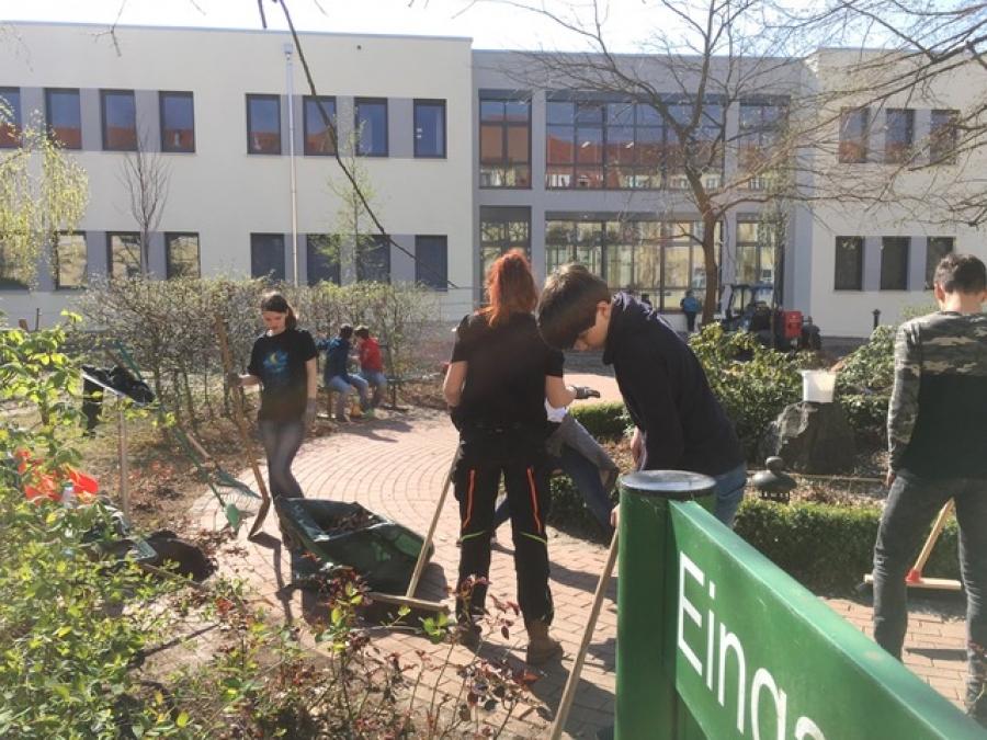 """Erster Einblick in die """"Grünen Berufe"""""""