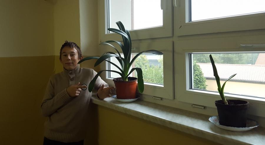 """Start des Projektes """"Grüne Schule"""""""